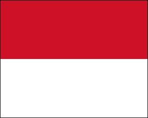 Quel est le nom du pays qui a ce drapeau ?