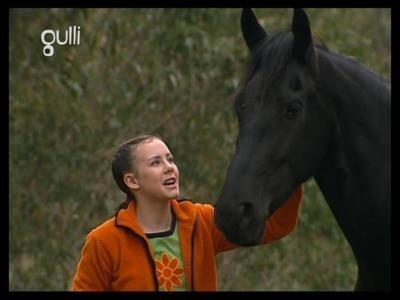Quizz grand galop quiz equitation chevaux - Grand galop le cheval volant ...