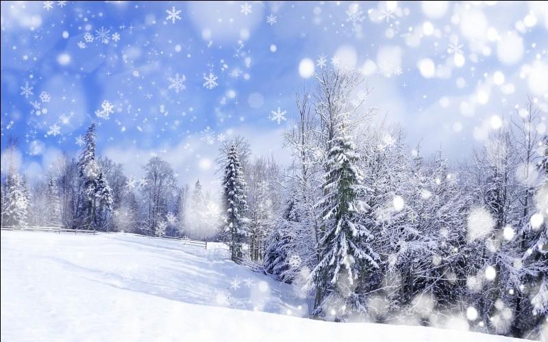 Le 21 décembre, nous changeons de saison. Pourriez-vous me dire laquelle ?
