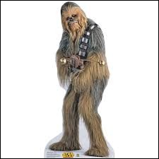 Quelle est l'espèce de Chewbacca ?