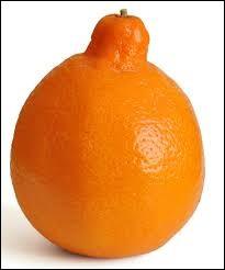Ce fruit ressemblant à une orange se nomme :