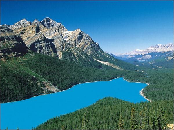 Cette photo a été prise au Canada, dans le parc national...