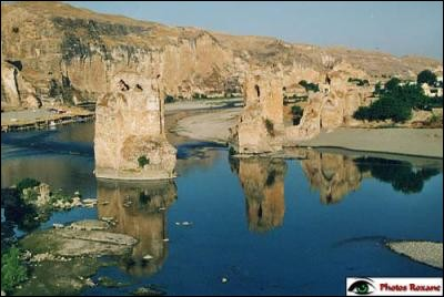 Le Tigre est un fleuve de Mésopotamie d'une longueur de 1900 km. Dans quel pays sa longueur est-elle la plus grande ?