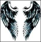Qu'est-ce qui vole et qui n'a pas d'ailes ?