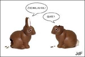 Comment appelle-t-on un lapin sourd ?
