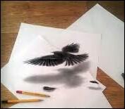 Toujours la même image : que trouves-tu le plus beau à regarder, l'oiseau ou son ombre ?