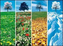 Dis-moi, quelle est ta saison préférée ?