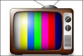 Quelle chaîne télévisée préfères-tu ?