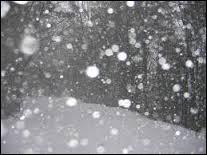 C'est bientôt Noël, peut-être sous __.