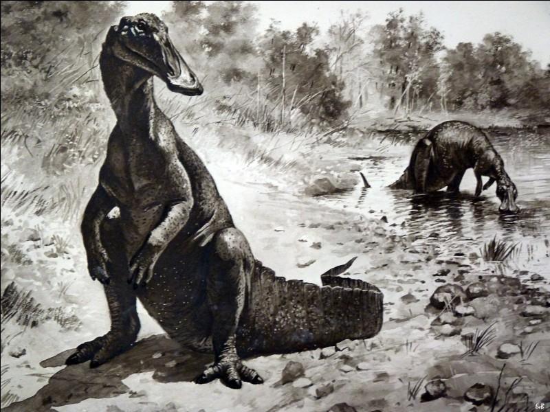 Aachenosaure a été nommé sur la seule base fossilisée d'un fragment de matière, qui a initialement été décrit pour être un morceau de mâchoire d'un dinosaure à bec de canard. Toutefois après analyse, il s'avéra être...