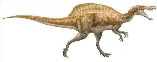 Archeoraptor fait partie des nombreux fossiles scandaleux qui attirent l'attention sur le marché illégal des fossiles en Chine. Cependant il arrive que certains fossiles frauduleux contiennent les morceaux d'un nouveau dinosaure. Ce fut le cas pour...