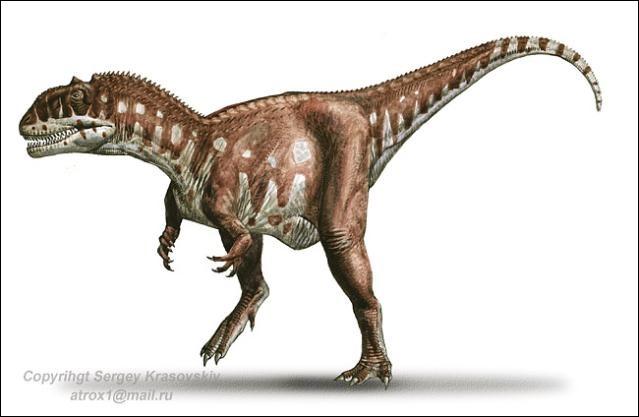 Aujourd'hui l'animal fut rebaptisé Majungasaure car on s'est aperçu qu'il était un grand carnivore appartenant à la famille des...