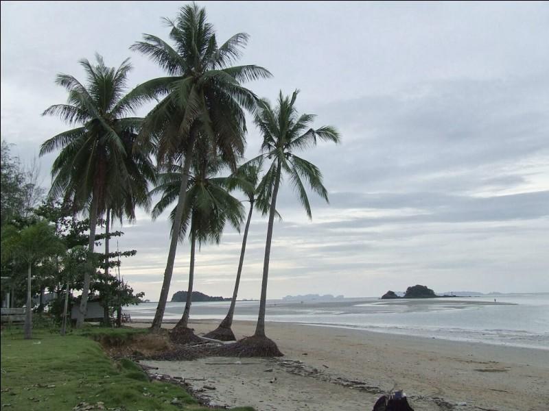 """K - L'île thaïlandaise """"Koh Lanta"""" est séparée en deux par un étroit bras de mer sablonneux."""