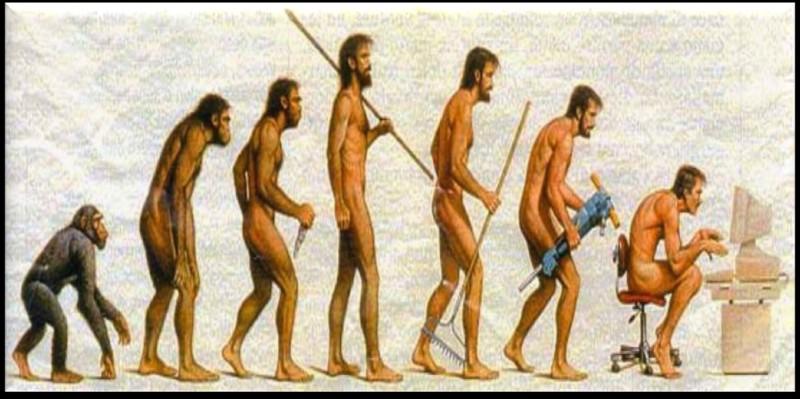 Q - L'ère quaternaire est marquée par l'apparition et le développement de l'espèce humaine.