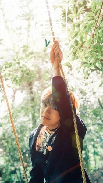 BTS - Kim Taehyung