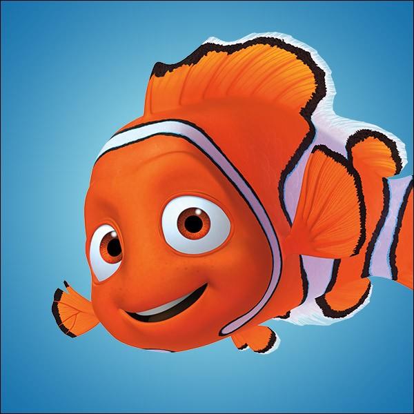 Dans le film de Nemo, comment Nemo se fait-il emmener ?