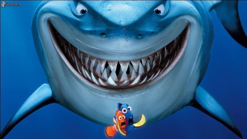Où Nemo est-il emmené une fois enlevé ?