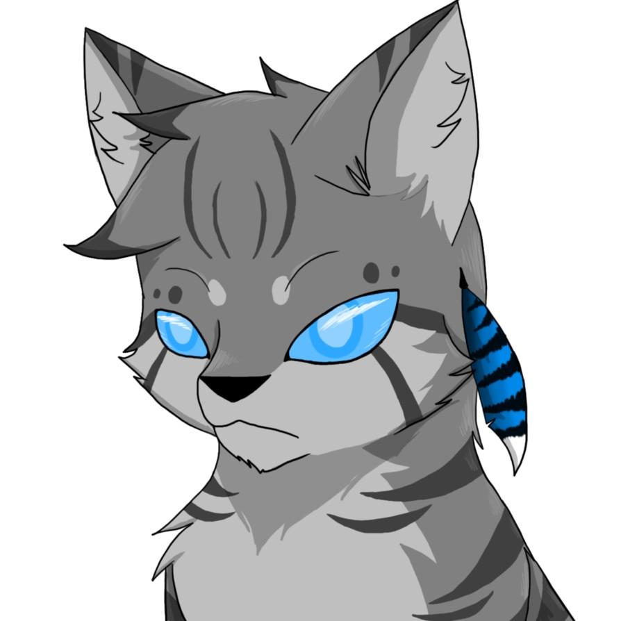 Connaissez-vous bien les chats gris de LGDC ?