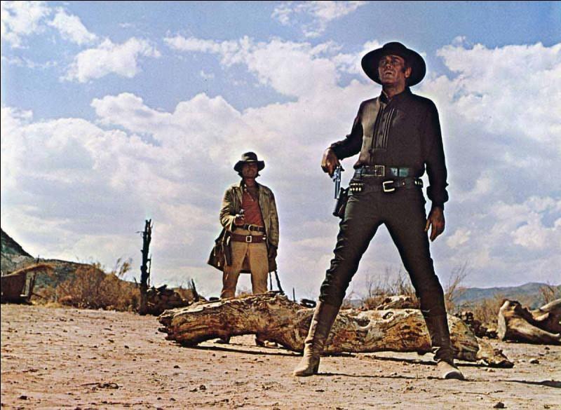 7ème : Ce film western fait figure de référence du genre. La prestation des acteurs, la musique et l'histoire ont fait de ce western un des films au plus gros succès au box office.