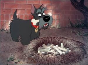 22e : Encore un Disney que probablement tous les enfants ont vu. La jolie histoire d'amour et les chansons de ce dessin animé sont les points forts du film.