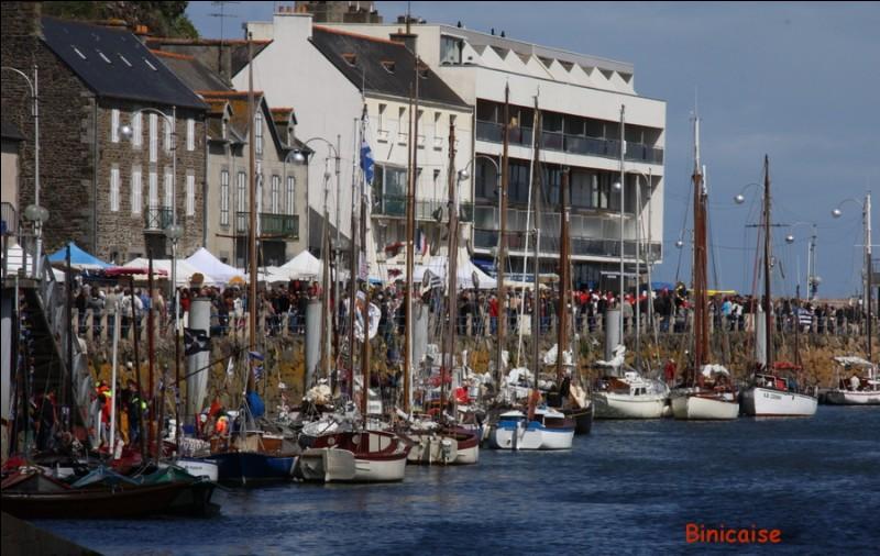 Quel poisson est fêté en mai dans la commune de Binic, dans les Côtes d'Armor, par des concerts, des dégustations et des expositions de vieux bateaux de pêche ?