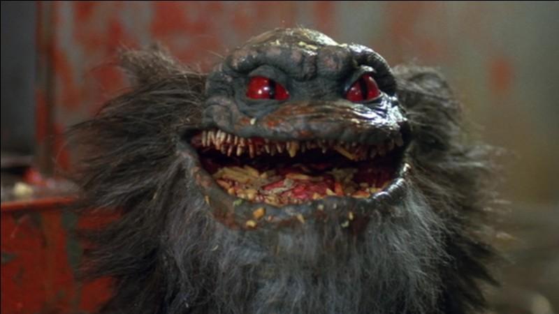 """Les """"Critters"""" sont les petits monstres du film éponyme, réalisé en 1986. Ils sont petits, poilus et leur appétit n'a aucune limite. Mais d'ou viennent-ils ?"""