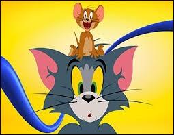 """Jerry est un chat dans """"Tom et Jerry""""."""