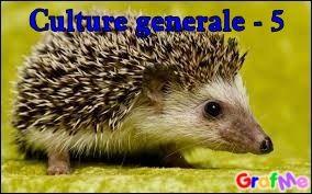 Culture générale - 5