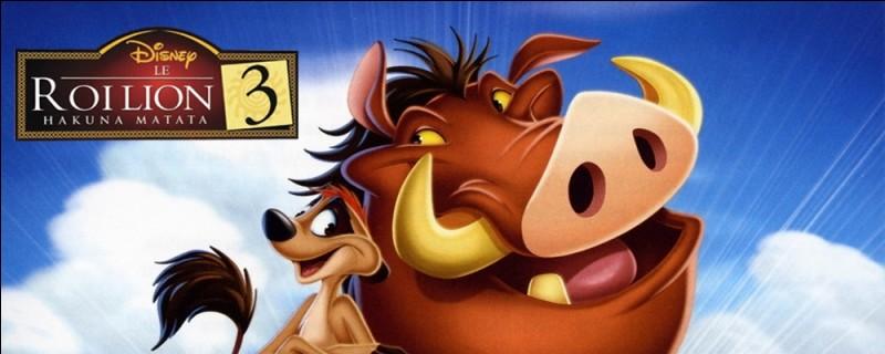 """Que raconte """"Le Roi Lion 3"""" ?"""