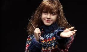 Où Hermione se réfugie-t-elle lorsque pendant sa première année, Ron se moque d'elle en l'imitant après un cours de sortilèges consacré au Wingardium Leviosa ?