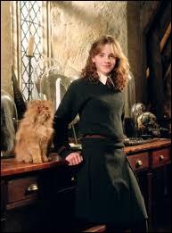 Comment le chat d'Hermione s'appelle-t-il ?