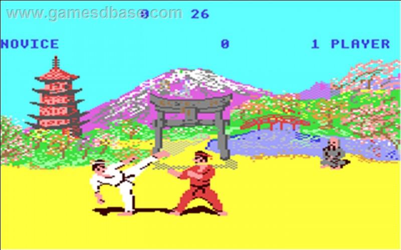 Dans quel jeu sorti en 1985 incarne-t-on un karatéka qui défie des adversaires les uns après les autres sous les yeux d'un vieux sage ? Le dernier stage du jeu consiste à assommer un taureau d'un coup de poing.