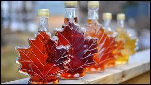 De quoi le Canada est-il le premier producteur mondial ?