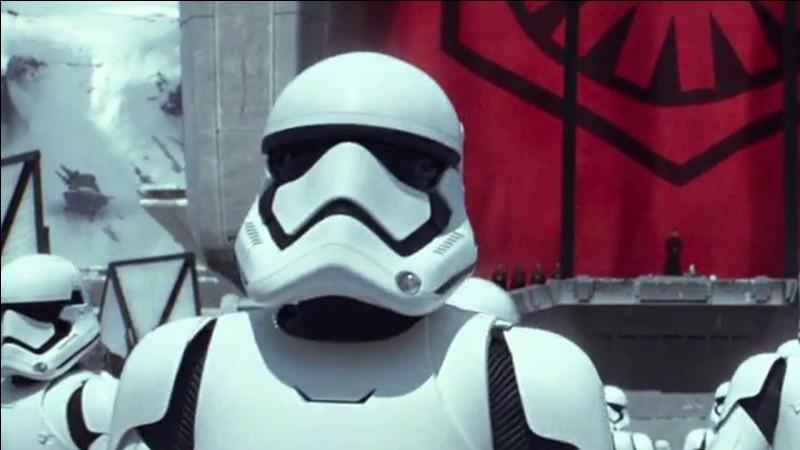 Ce sont les soldats de l'Empire. Ils sont blancs et noirs. Qui sont-ils ?