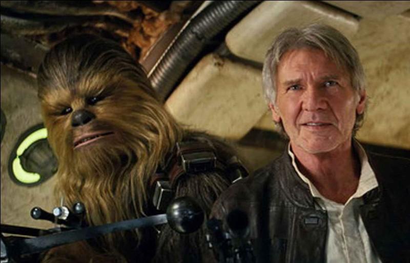 Chewbacca est un...