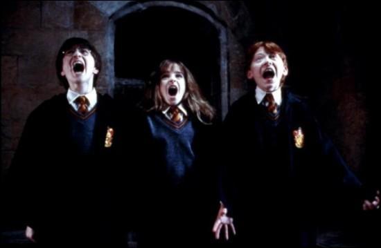 Qu'est-ce qui effraie Harry, Ron et Hermione ?