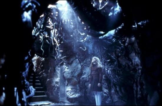 Où se trouve Hermione sur cette image ?
