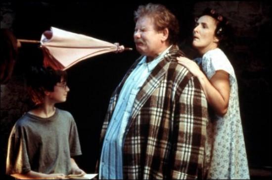 Qui pointe son parapluie sur Vernon Dursley ?