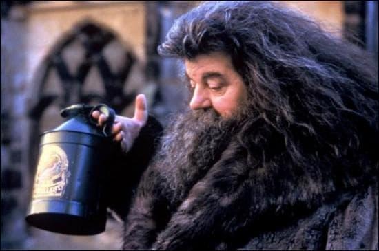 De quoi a été accusé Hagrid ?