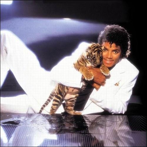 Cett photo a été prise en 1982 : de  quel album s'agit-il?