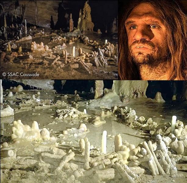 En 2016, on a réussi à dater la réalisation « humaine » la plus ancienne connue ! Elle serait vieille de 176 500 ans et se situe en France. Connaissez-vous le… constructeur et le lieu ?