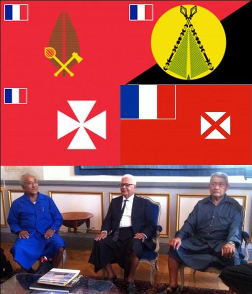La France est une République. Elle est dirigée par un président de la République. Bien sûr, il n'y a plus de rois régnants en France !Est-ce vrai ou faux ?