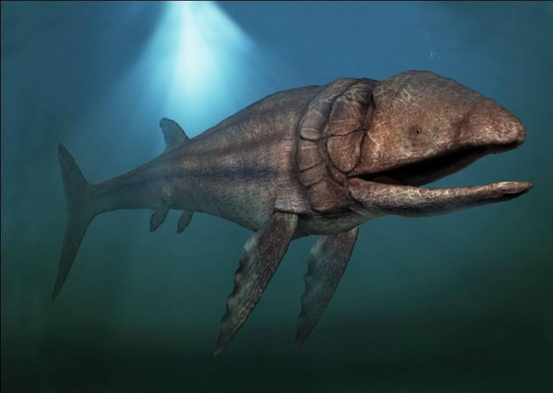 Malgré sa taille, Shastasaure n'était pas plus grand que Leedsichthys (taille 20 mètres), le plus grand poisson de tous les temps.Ce poisson a vécu...