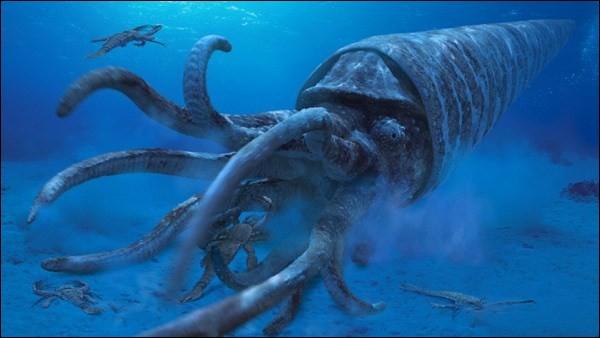 Jaekelopterus devait cependant fuir face aux nautiloïdes orthocères dont la coquille pouvait mesurer jusqu'à...