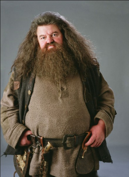 Hagrid s'est fait renvoyer de Poudlard lors de...