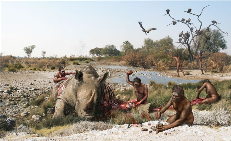 Entre quelles dates l'évolution connaît-elle la période de l'homo habilis ?
