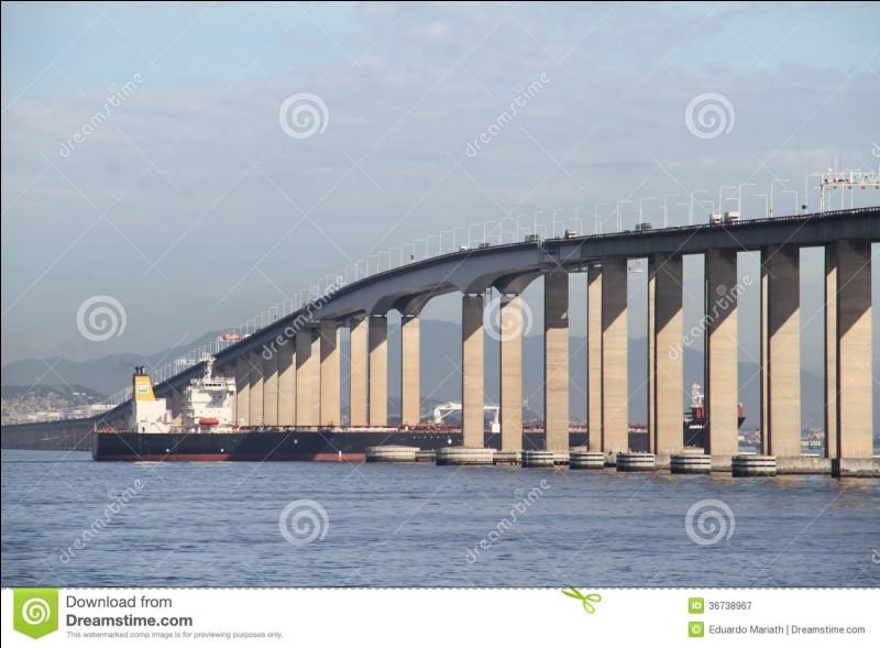 Le pont Rio-Niteroi, long de 13 300 mètres, relie les villes de Rio de Janeiro et de Niteroi ; il enjambe donc la baie de :