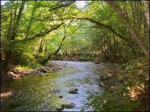 Tu es devant une rivière, tu préfères....
