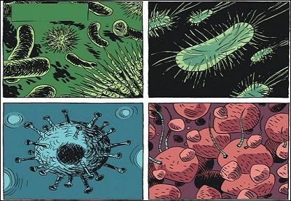 Quels sont ces organismes ?