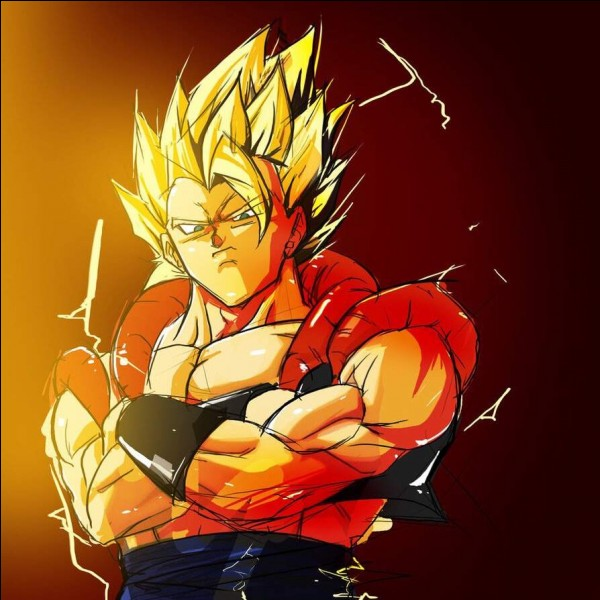 Que se passe-t-il quand la fusion metamol entre Son Goku et Vegeta dépasse 30 minutes ?